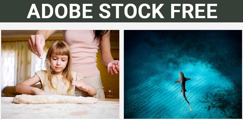 adobe-stock-fre